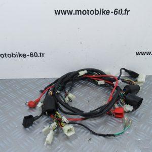Faisceau électrique JM Motors Sunny 50