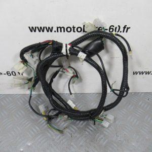 Faisceau électrique ZNEN ZN 125T-19
