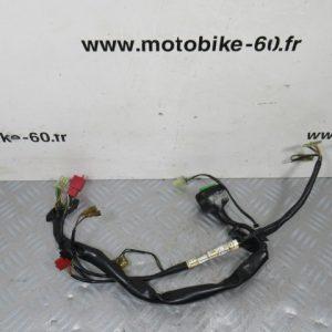 Faisceau électrique HONDA PANTHEON 125