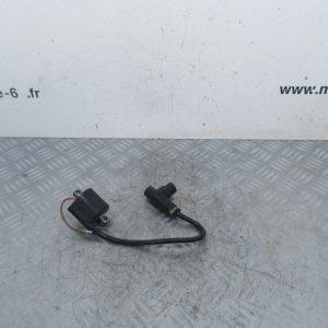 Bobine allumage Suzuki RM 65 (ref:f6t536)