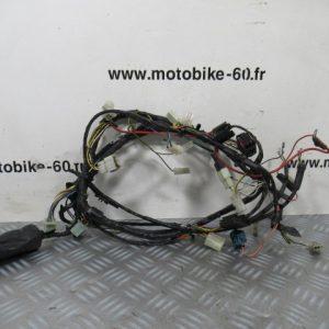 Faisceau électrique Peugeot Ludix 50