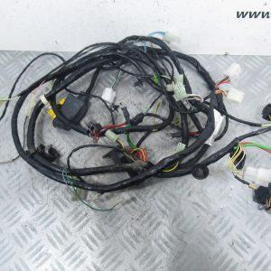 Faisceau electrique Peugeot Citystar 50 (1178525400/2)