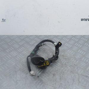 Faisceau electrique Yamaha YZF 250