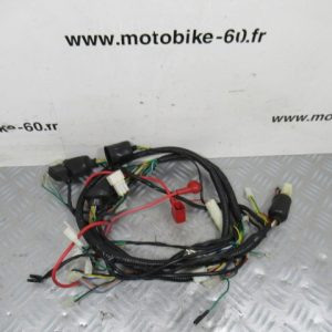 Faisceau électrique JM Motors Sunny 50cc