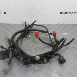 Faisceau elecrique Honda Vision 50