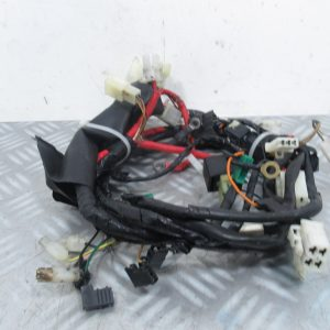 Faisceau electrique Yamaha Slider 50