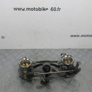 Papillon Ducati Monster S4R 998 4t