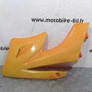 Ouie radiateur plaque laterale gauche Dirt Bike Lifan 125