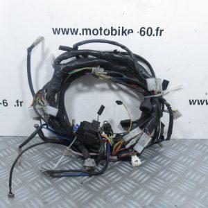 Faisceau électrique Aprilia RS 125 ( ref: 8124488)