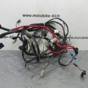 Faisceau YAMAHA MAJESTY 125cc