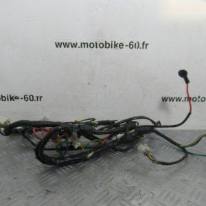 Faisceau electrique / Peugeot kisbee 50 cc