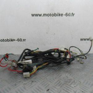 Faisceau electrique / Peugeot kisbee 50 c.c