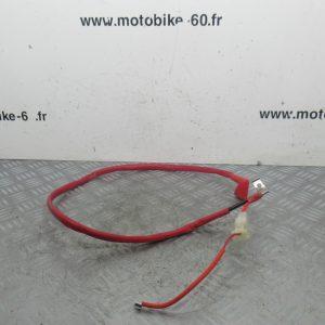 Cable demarreur Sym Jet 4 50