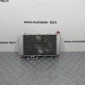 Radiateur eau Piaggio Xevo 125