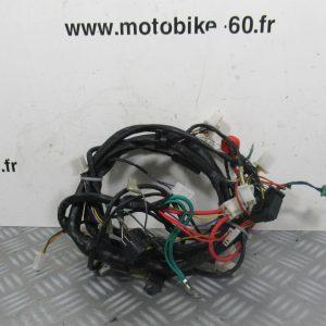 Faisceau électrique / Peugeot Kisbee 50 ( ref: 2001445300 )
