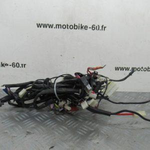 Faisceau electrique / Piaggio Zip 50
