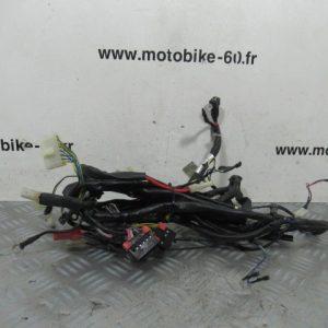 Faisceau electrique / Piaggio Zip 50 cc