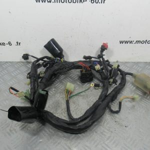 Faisceau electrique Honda Deauville 650 4t