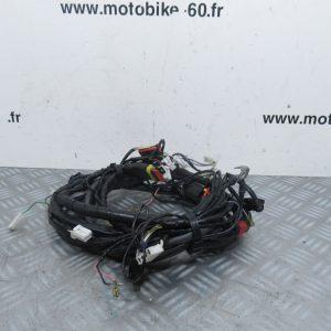 Faisceau électrique Piaggio Liberty 50cc ( ref: 641880 )