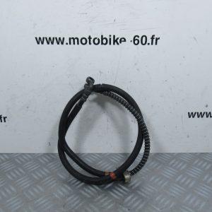Flexible frein avant / Piaggio Vespa LX 50 c.c